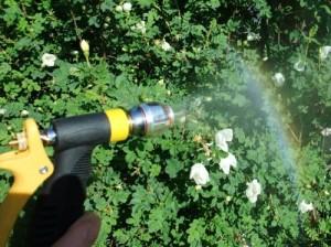 Garten Wirbler für Wirbelwasser