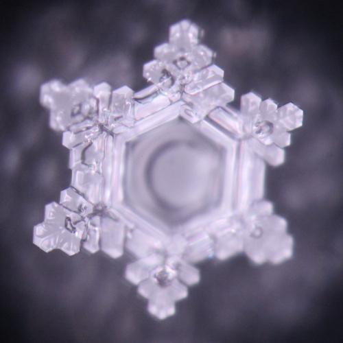 Aquadea Dusche emoto kristall