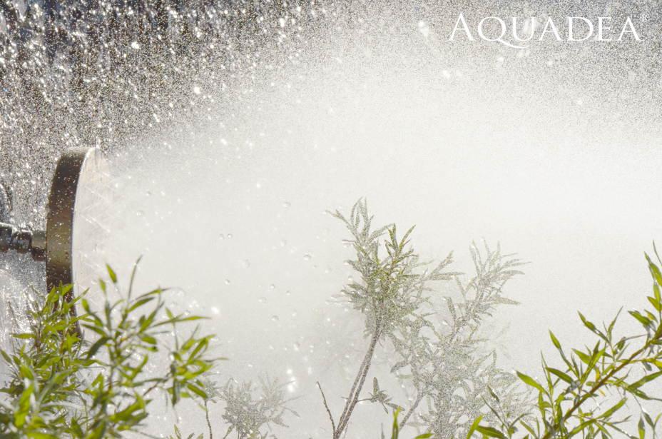 aquadea arcturus crystalportal